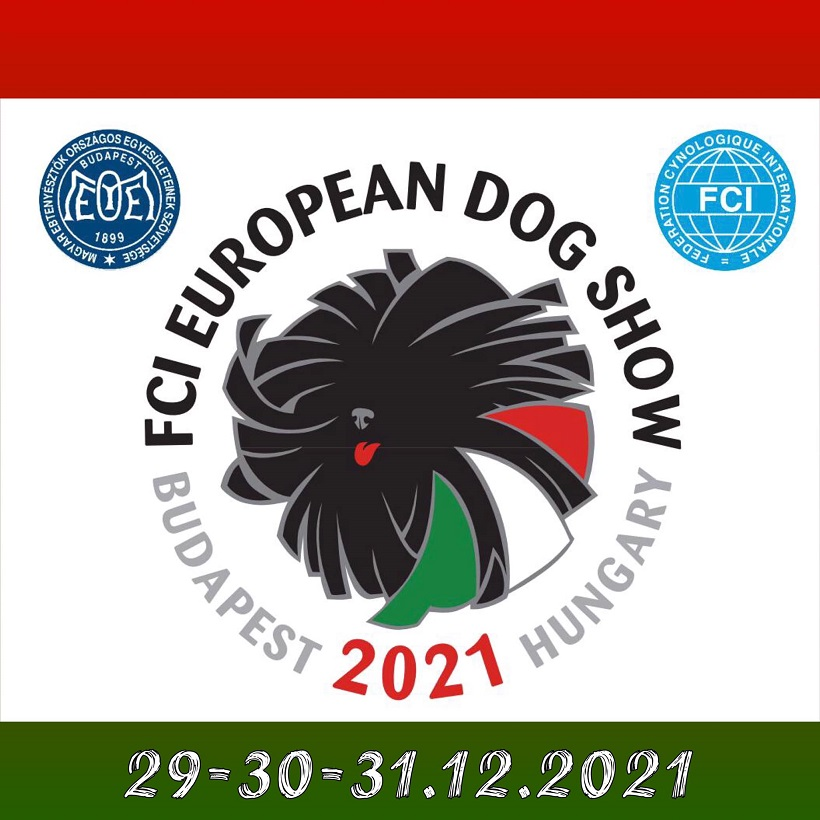 HUNGARY EDS POSTPONED1SMALL